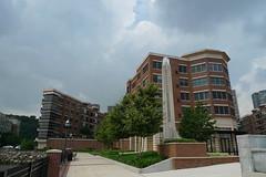 Real Estate Grandview