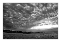 Dunes & beach