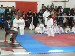 taekkyeon(0.0), striking combat sports(1.0), hapkido(1.0), individual sports(1.0), contact sport(1.0), taekwondo(1.0), sports(1.0), tang soo do(1.0), combat sport(1.0), martial arts(1.0), karate(1.0), japanese martial arts(1.0),