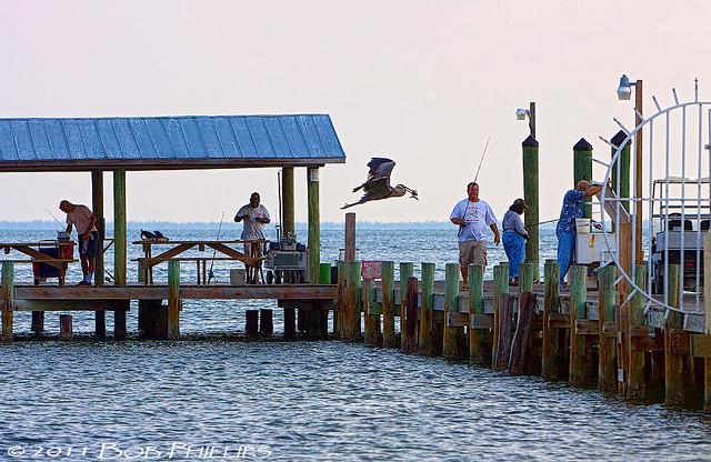 Fishing pier at bokeelia flickr photo sharing for Bokeelia fishing pier