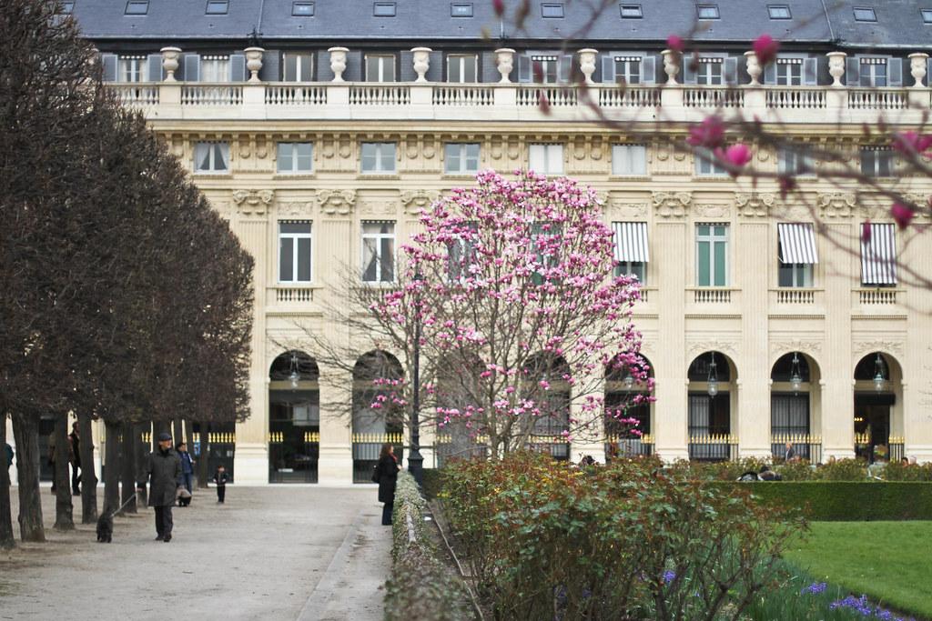 Palais Royal-14.jpg