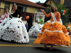 Arvada Harvest Festival