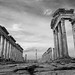 Avenue of Apamea