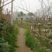 urban farm-