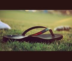 outdoor shoe(0.0), shoe(0.0), footwear(1.0), grass(1.0), sandal(1.0), flip-flops(1.0),