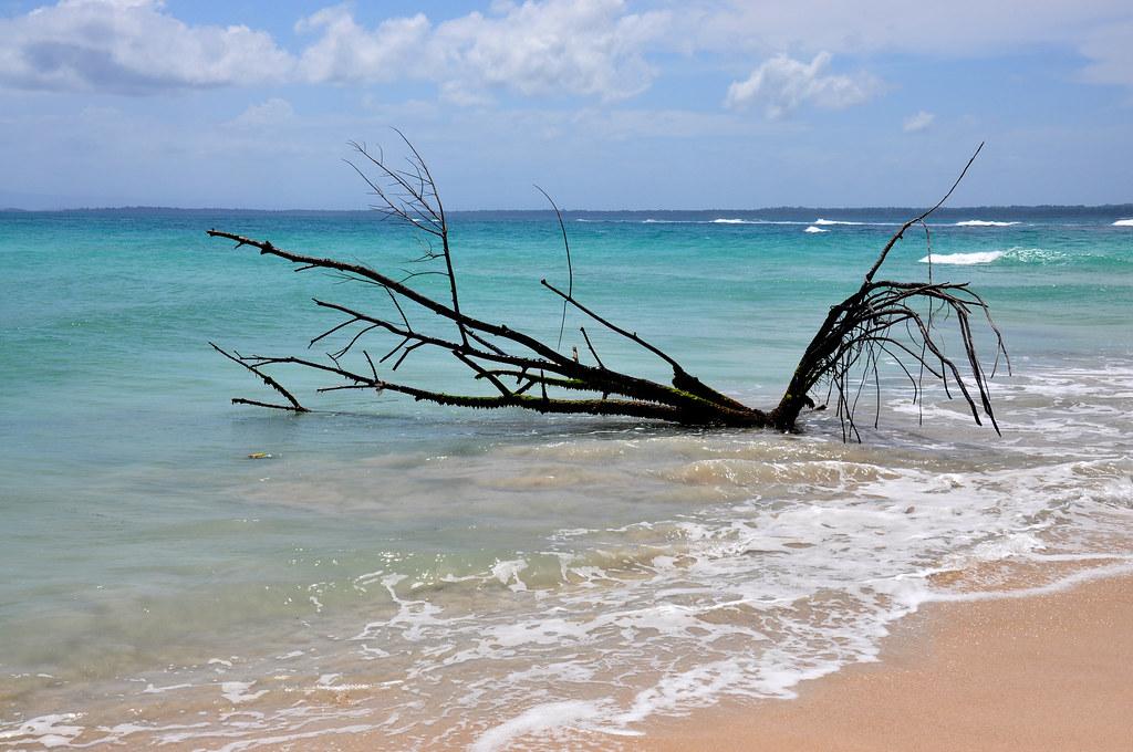 Bocas del Toro: o paraíso é logo ali !!!