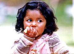 ¿Cuántos niños de 0 a 14 años hay en Ecuador? (2014)