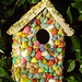 Dyed Shell Bird House -