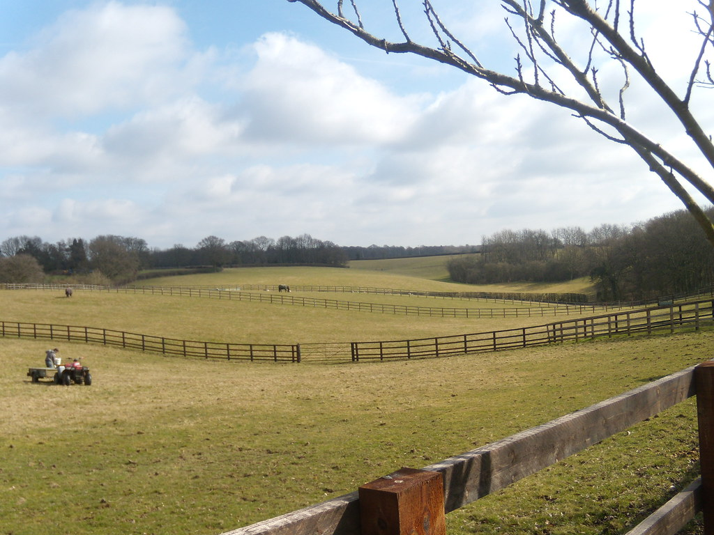 View with fences Great Missenden to Amersham