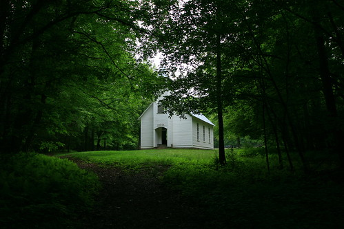 trees green church grass tennessee gsmnp cataloochee palmerchapel
