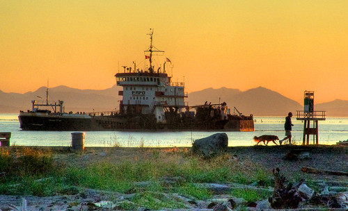 Dredging the Fraser River
