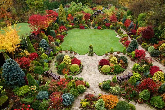 Autumn Garden Beautiful Acers Best Viewed In Original Siz Flickr Photo Sharing