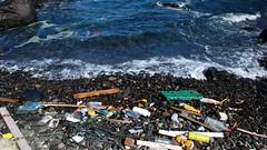 sea, pollution, waste,