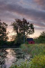 Sunrise on the Pond