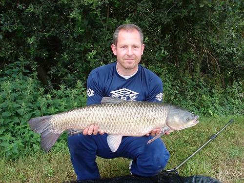 france 20lb grass carp