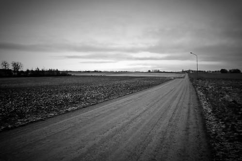 sunset sky bw field landscape blackwhite skåne sweden roedeer canonefs1785mmf456isusm törringe