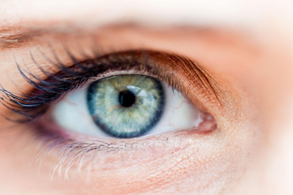 Elise's eyes