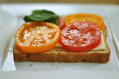 bruschetta(0.0), produce(0.0), meal(1.0), breakfast(1.0), vegetable(1.0), food(1.0), dish(1.0), cuisine(1.0), toast(1.0),