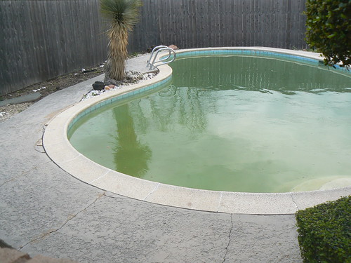 Before - Pool & Backyard