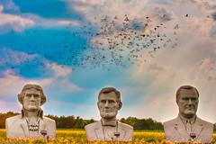 ...Flock Together