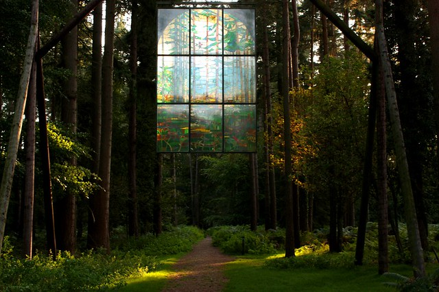 The Forest Cathedral