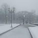 Snowy Park by Yoan Mitov