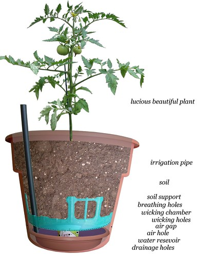 D I Wine And Dine Self Irrigating Planter
