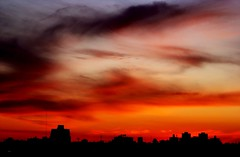 Danzan las nubes II - The clouds dance II