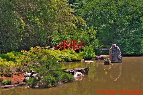 nature water beautiful gardens canon botanical rebel interesting birmingham alabama botanicalgardens hdr lightroom photomatrix skylimitimages