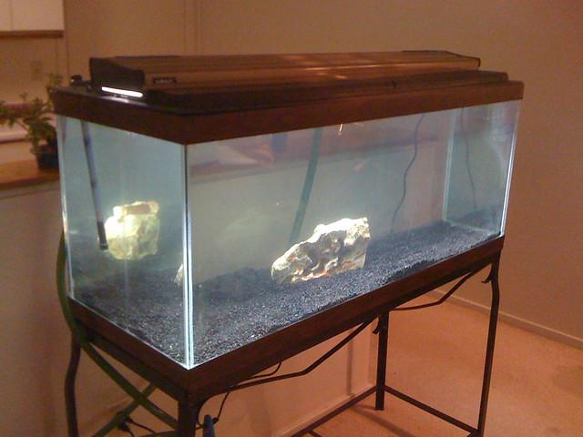 New 70 gallon aquarium flickr photo sharing for 90 gallon fish tank dimensions