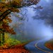 The Bend of Autumn Mist