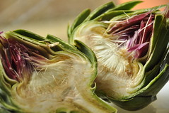 shallot(0.0), plant(0.0), floristry(0.0), leek(0.0), vegetable(1.0), flower(1.0), thistle(1.0), artichoke(1.0), produce(1.0), food(1.0),
