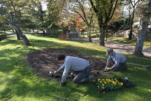 Consejos para buscar trabajo de jardinero la biblioteca for Trabajo jardinero