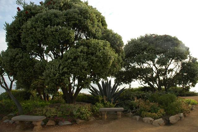Meditation Garden Self Realization Fellowship Encinitas California Usa3429 Flickr Photo