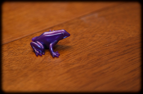 froggin'