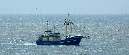 Vissersboot bij de Hondsbossche Zeewering