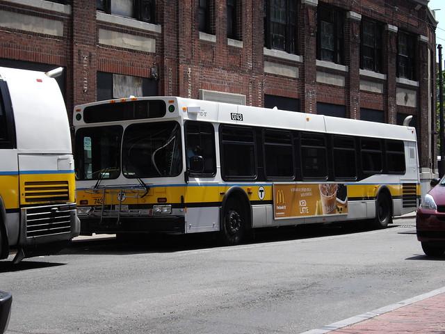 Bus boston new york