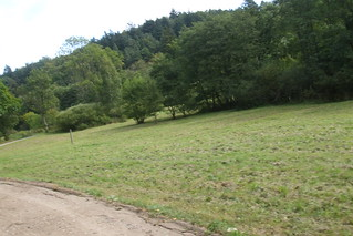 Image of Diabelski Kamień. cycling dolinaradości geo:lat=54392828 diabelskikamień geo:lon=18513261