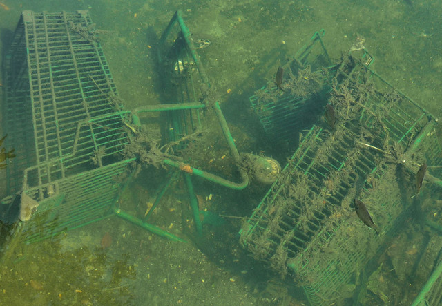 Fishin' for Blinkie, Lake Ontario, Kingston, ON, Canada