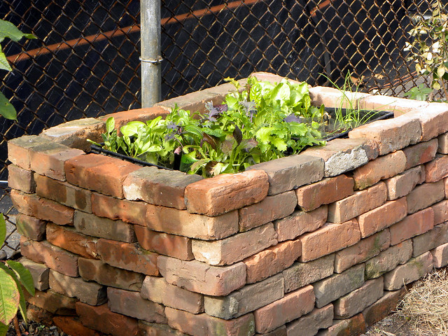 how to make a garden bed with bricks