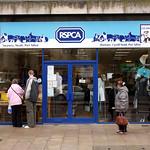 RSPCA Shop - Roy