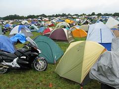 MOA camping