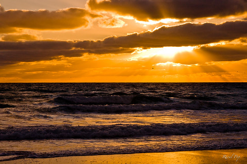 winter seagulls birds clouds sunrise canon reflections dawn sand flickr waves seasons unitedstates flat florida horizon earlymorning shore hollywood tropical smugmug facebook raysofsunlight canoneos5d googlephotos