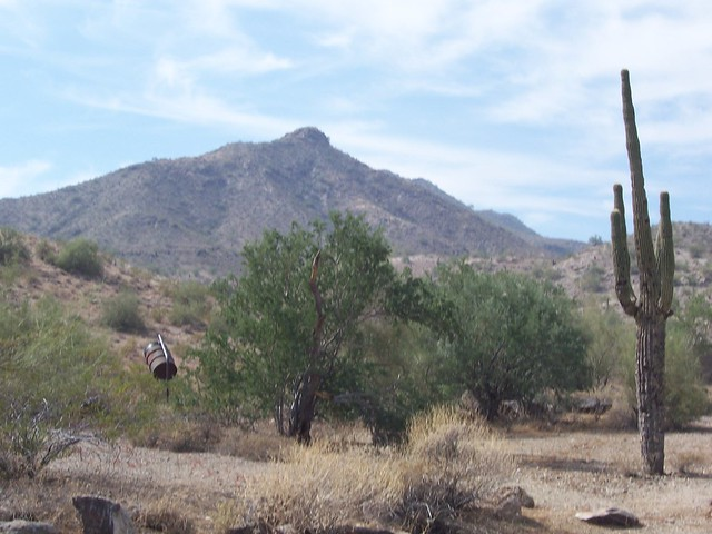 South Mountain Park by CC user flower8 on Flickr