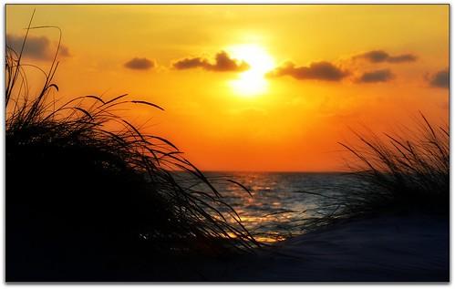 sardegna italy island europa italia tramonto mare sardinia dune cielo sonia sole spiaggia sabbia isola militari portopino flickrbronzetrophygroup