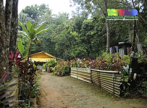 Kampong house at Kampong Melayu