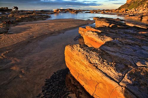 coast photographer australia nsw thechallengefactory seansea newcastlesundance ©richardtaylor 20110528img6027