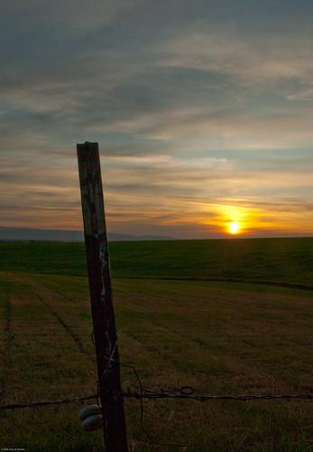 sunset summer sun field fence john ceramic landscape wire post dusk farming grain agriculture barbed insulator demke