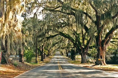 Orange Avenue, Floral City, Florida