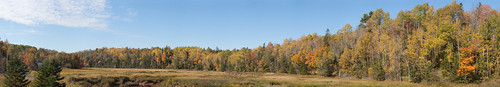 autumn trees sky panorama orange canada tree fall beautiful leaves sunshine skyline clouds forest landscape golden maple october scenery colorful afternoon novascotia bright scenic panoramic maritime stunning glowing 2009 shubenacadie stewiacke easterncanada